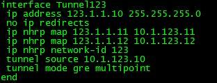 DMVPN hub config
