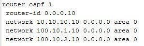 PE-10 OSPF config